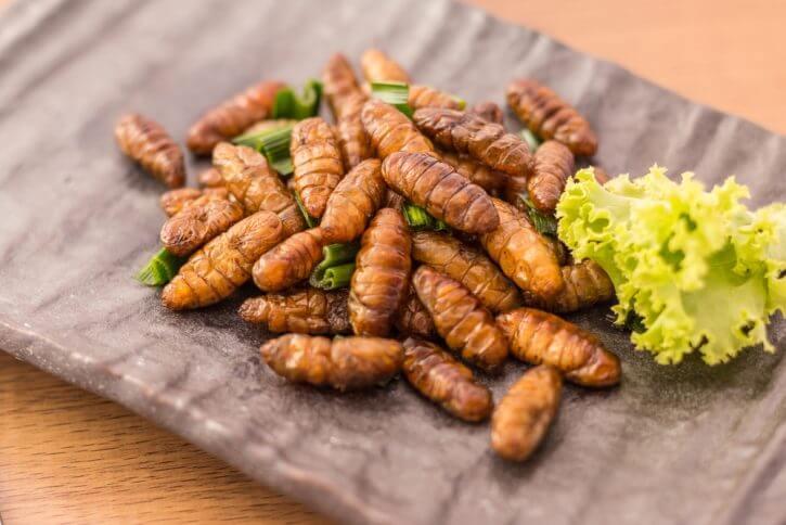 Come cucinare piatti sfiziosi con a base di insetti