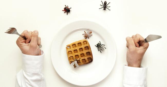 Come prevenire Infarti mangiando Insetti Commestibili