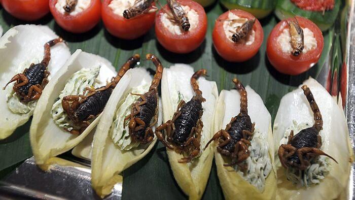 Ricette con insetti: 15 migliori piatti in giro per il mondo
