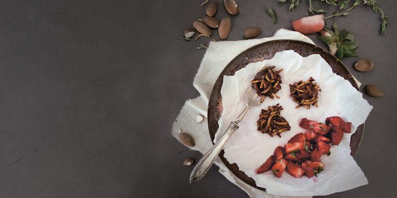 Ricette a base di cavallette e larve: i migliori piatti